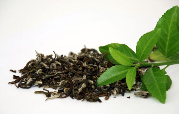 Tee- & Kaffeezubereiter grau -1364